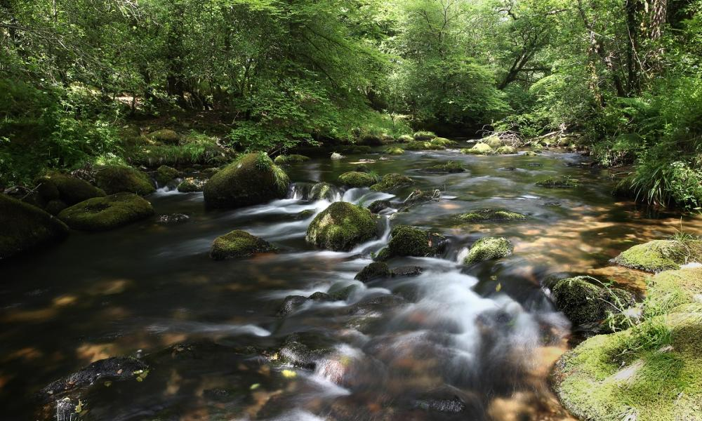 Drinking Water From Rivers Uk