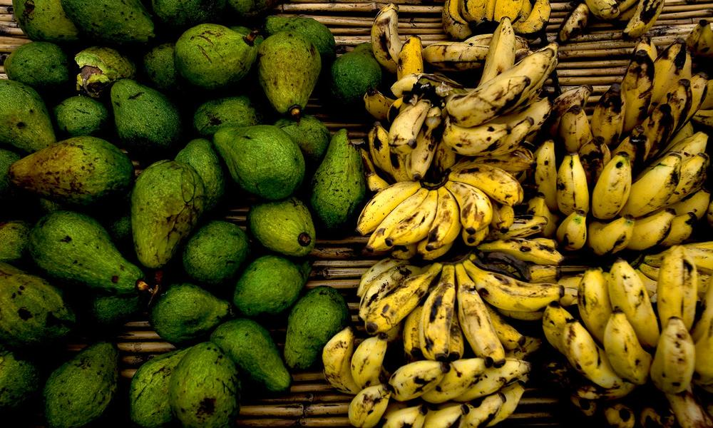 Bananas and avocados, which are grown near the Virunga National Park