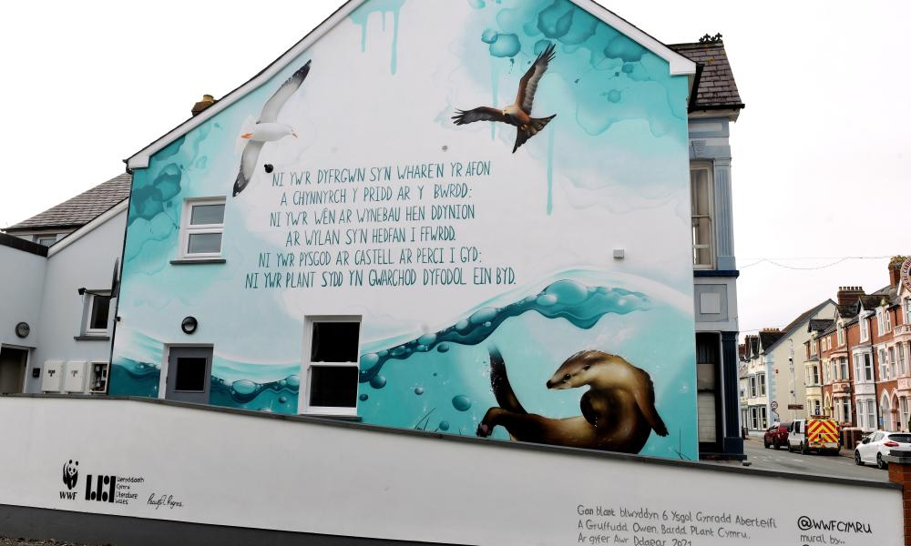 Earth Hour mural in Cardigan, Wales