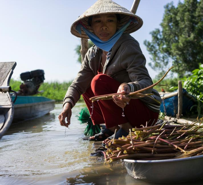 Vietnamese woman cleaning vegetables and aquatic plants