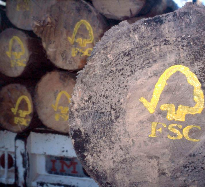 FSC logo painted on sustainable harvested logs