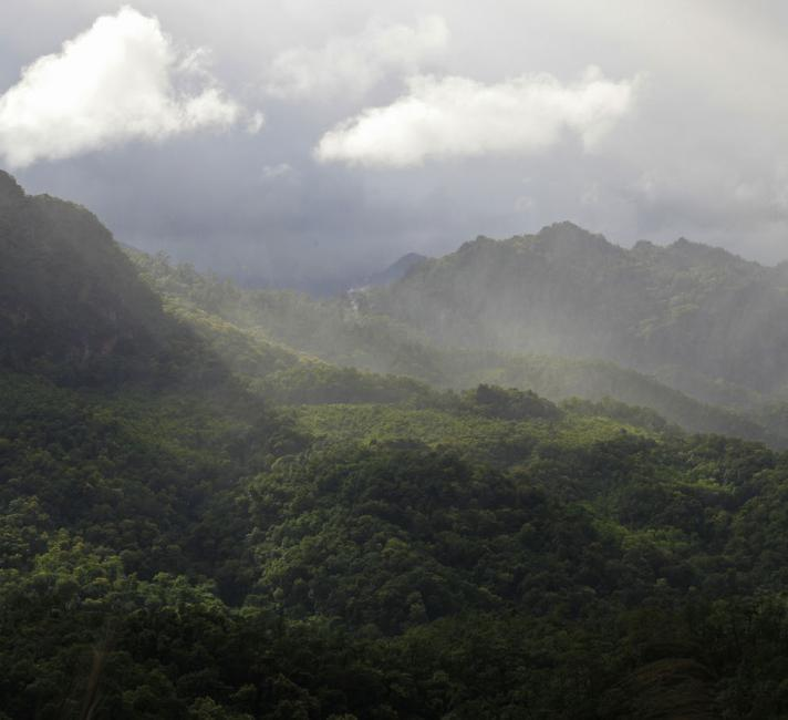 Landscape of the Western Forest Complex in Thailand. © Adam Oswell / WWF