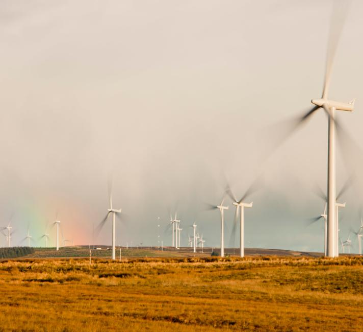 A rainbow over Whitlee wind farm