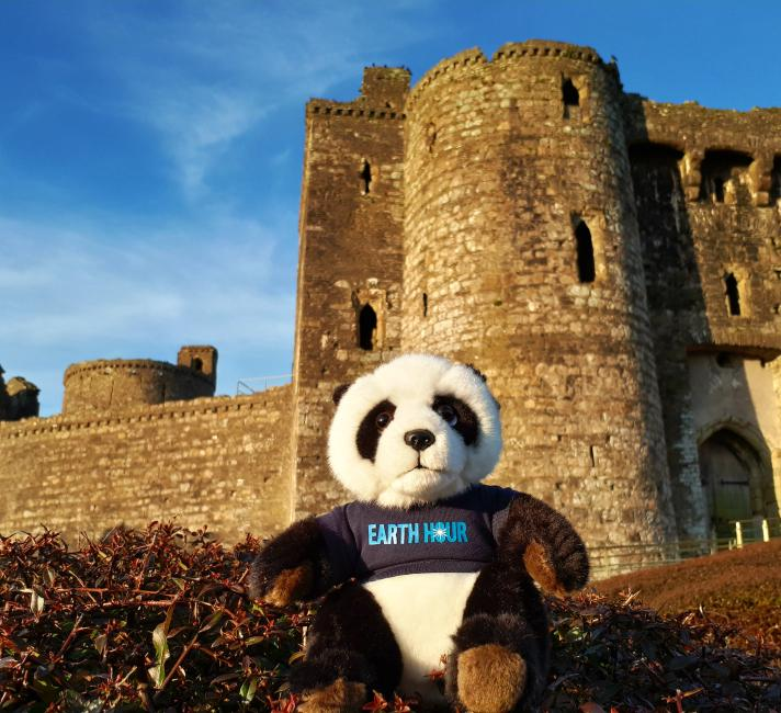 Panda at Kidwelly Castle, Wales