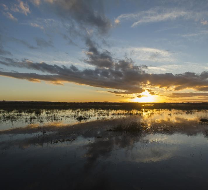 Sun sets over the Soetendaals wetland through winter clouds