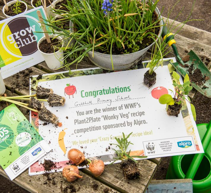 Gilthill Primary School won WWF-UK's Wonky Veg competition