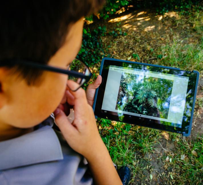A boy uses the seek app to explore nature
