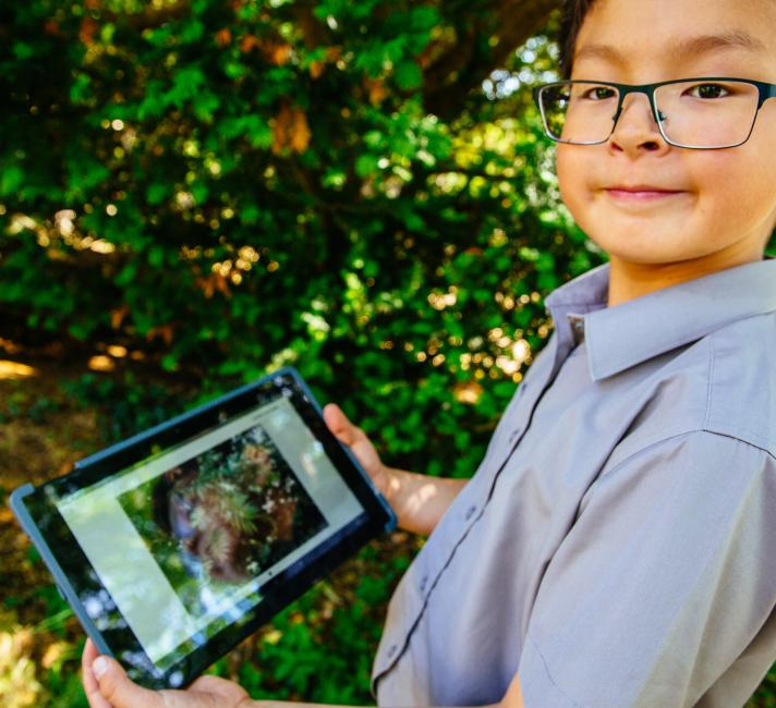 A boy uses the seek app to explore local nature