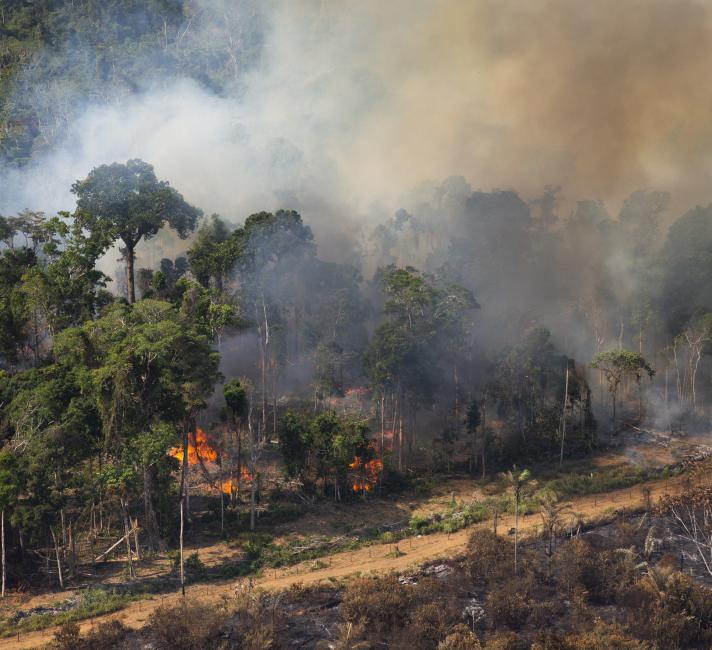 Fires in Brazil - region of Pará and northern Mato Grosso