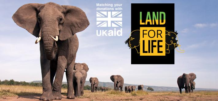 Donate to our Land For life appeal