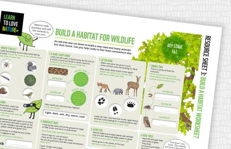 Build a habitat worksheet
