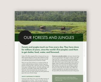 Our Forests and Jungles