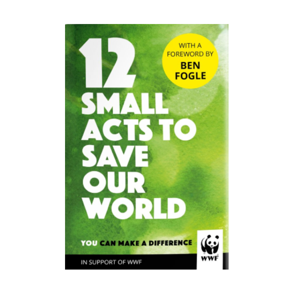 12 small acts to save our world - hardback book