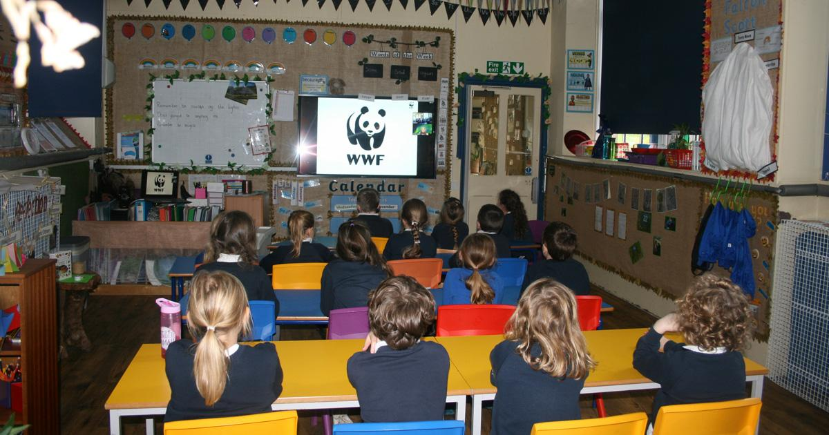 Live Talks for Primary Schools