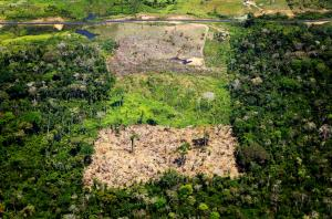 Aerial shot showing deforestation in Amazon rainforest