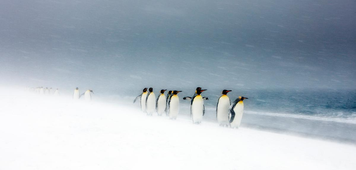 Nasty Weather Challenges But Doesnt >> 10 Myths About Climate Change Wwf