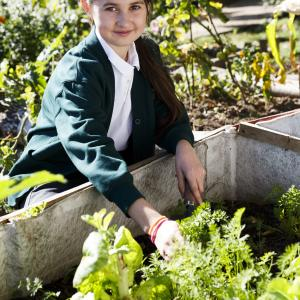 School girl in the allotment