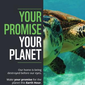 Earth Hour Posters Wwf