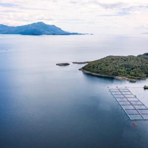 Salmon Farm in Aysen Region, Chile